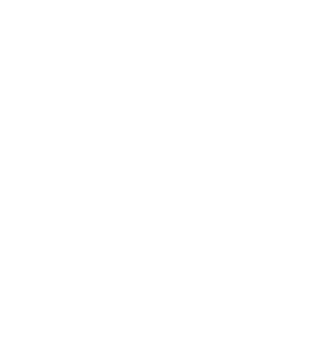 Paul Ozz LOGO 2017 WHITE.png